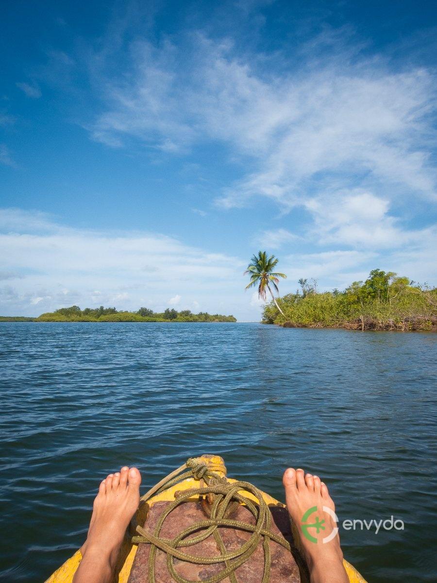Turismo e Natura - Rio delle Amazzoni
