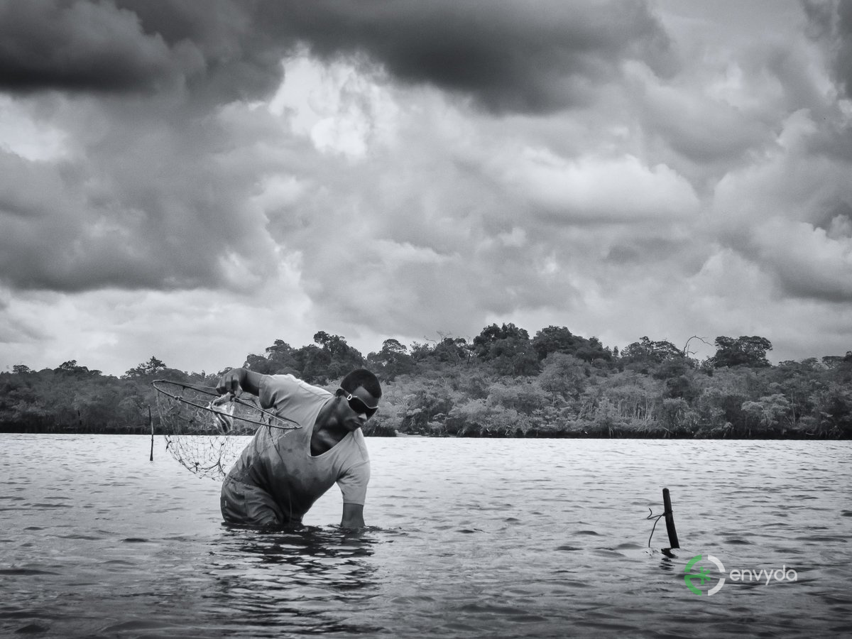 Pesca dei colori